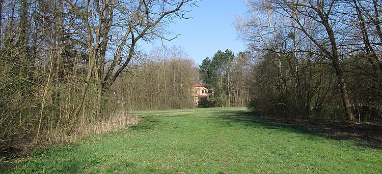 In der engeren Wasserschutzzone im Wasserwald in Linz gibt es Neubauten.